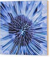 Blue Wish Wood Print