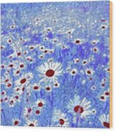 Blue With White Daisies Wood Print