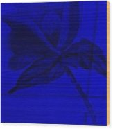 Blue Wood Flower Wood Print