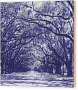 Blue World In Savannah Wood Print