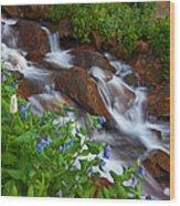 Bluebell Creek Wood Print