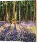 Bluebells In Shadows Wood Print