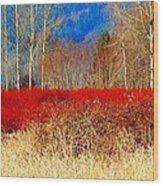 Blueberry Bushes In Winter Wood Print