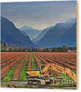 Blueberry Field Excavator Wood Print