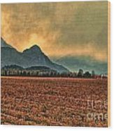 Blueberry Fields Wood Print