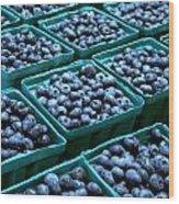 Blueberry Season In Maine Wood Print