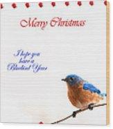 Bluebird Christmas Card Wood Print