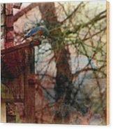 Bluebird Home Wood Print