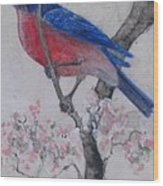 Bluebird In Cherry Blossoms Wood Print