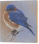Bluebird In The Snow Wood Print