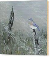 Bluebird On Post Wood Print