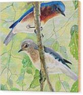Bluebird Pair Wood Print