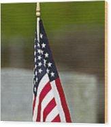 Bluebird Perched On American Flag Wood Print