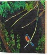 Bluebird Shimmer Wood Print