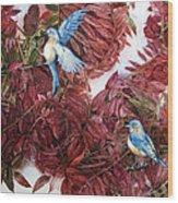 Bluebirds Love Sumac Wood Print by Helen Klebesadel