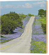 Bluebonnet Highway 2am-28667 Wood Print