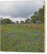 Bluebonnet Hill Wood Print