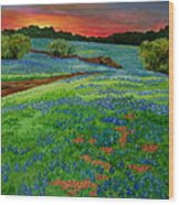 Bluebonnet Sunset Wood Print
