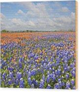 Bluebonnets And Paintbrush Near Whitehall Texas 2 Wood Print