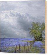 Bluebonnets And Spring Rain Wood Print