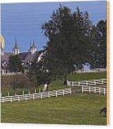 Bluegrass Moonrise Wood Print