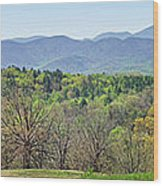 Blueridge Mountains In The Spring Wood Print