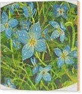 Bluets Of The Shenandoah  Wood Print
