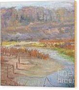 Bluff Canyon Overlook Wood Print