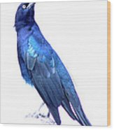 Bluish Bird Wood Print by DerekTXFactor Creative