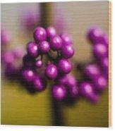 Blur Berries Wood Print