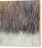 Blurred Brown Winter Woodland Background Wood Print