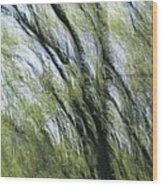 Blurred Trees Wood Print