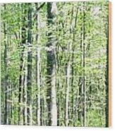 Blurred Trees Spring-1 Wood Print