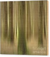 Blurred Trunks In A Forest Wood Print
