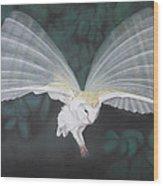 Blurred Wings Wood Print