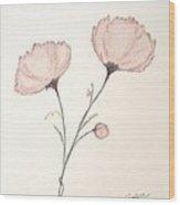 Blush Peonies Wood Print by Christine Corretti