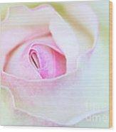Blushed Rose Wood Print
