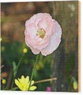 Blushing In Pink Wood Print