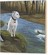 Bo At The Patapsco Wood Print