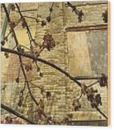 Boarded Windows And Branches Wood Print