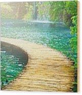 Boardwalk Art Wood Print by Boon Mee