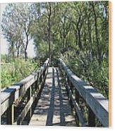 Boardwalk At Tifft Nature Preserve Buffalo New York Wood Print