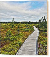 Orono Boardwalk Wood Print