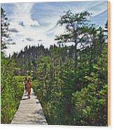 Boardwalk In Salmonier Nature Park-nl Wood Print