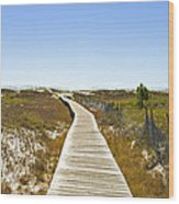 Boardwalk Wood Print by Susan Leggett