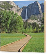 Boardwalk To Yosemite Falls  Wood Print