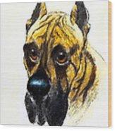 Boarhound Portrait Wood Print