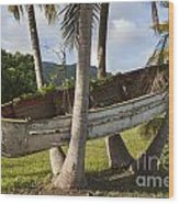 Boat In A Tree Puerto Rico Wood Print