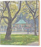 Boat Pond, Central Park Oil On Canvas Wood Print
