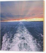 Boat Wake On Georgian Bay  Wood Print